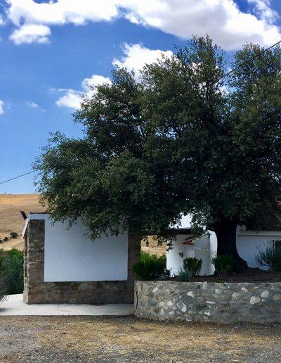 casa-rural-el-naranjo-antequera-exteriores (2)