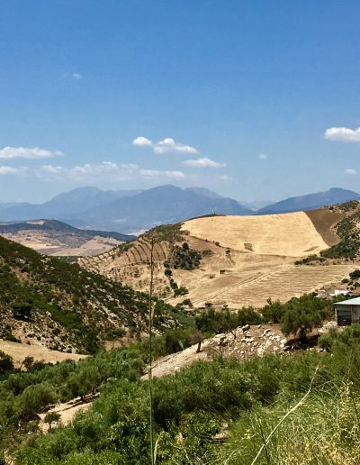 casa-rural-el-naranjo-antequera-vistas